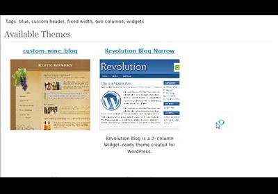 WordPress Theme Changes